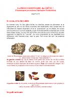 La PROCESSIONNAIRE du CHÊNE (insectes .net)